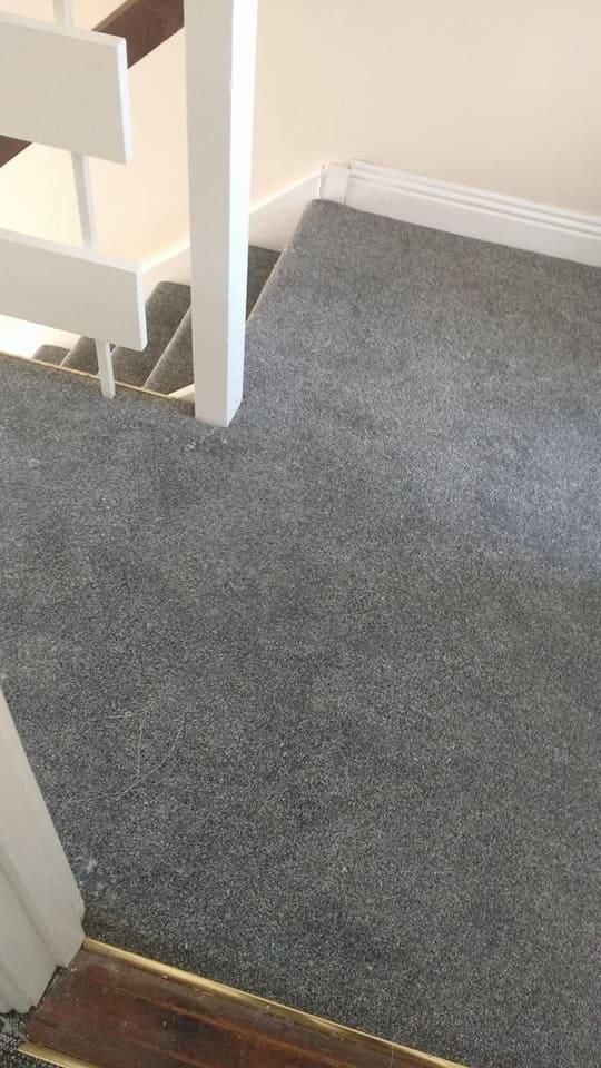 Plain Carpet Fitted By A D Carpets A D Carpets